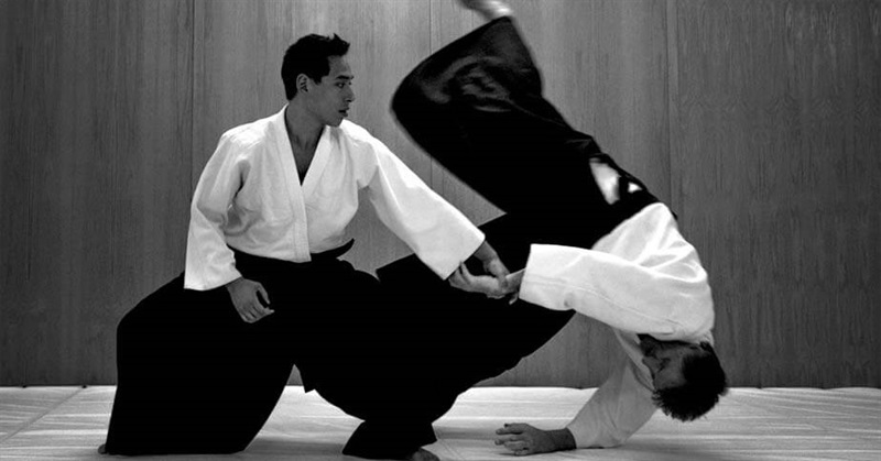 Aikido - Facts and History