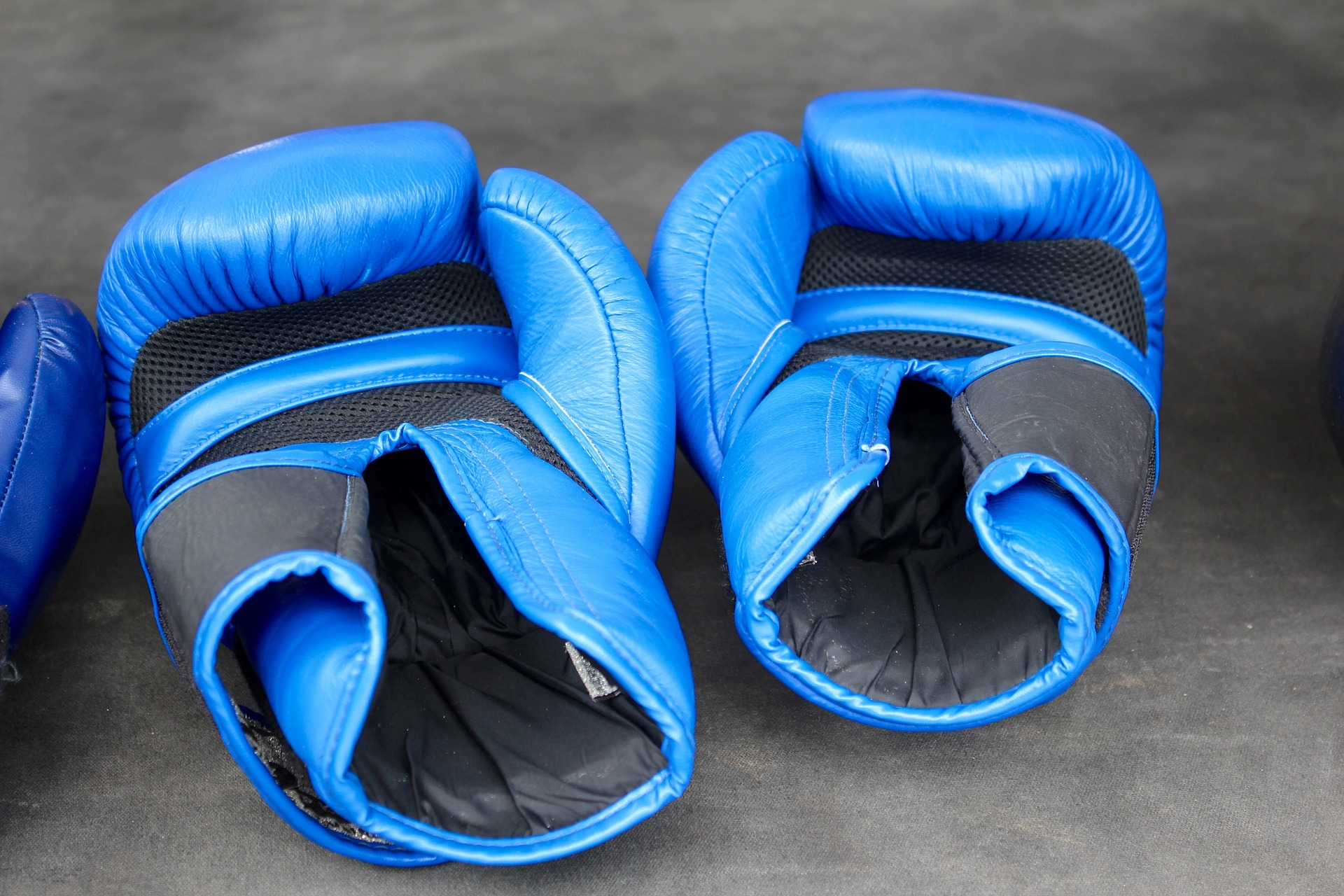 Top 5 Best Boxing Gloves for Heavy Bag