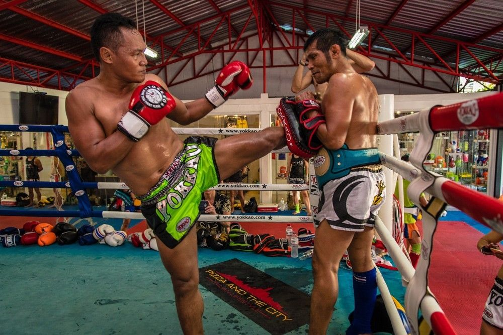 Top 10 Best Muay Thai Gloves [Reviewed & Rated]