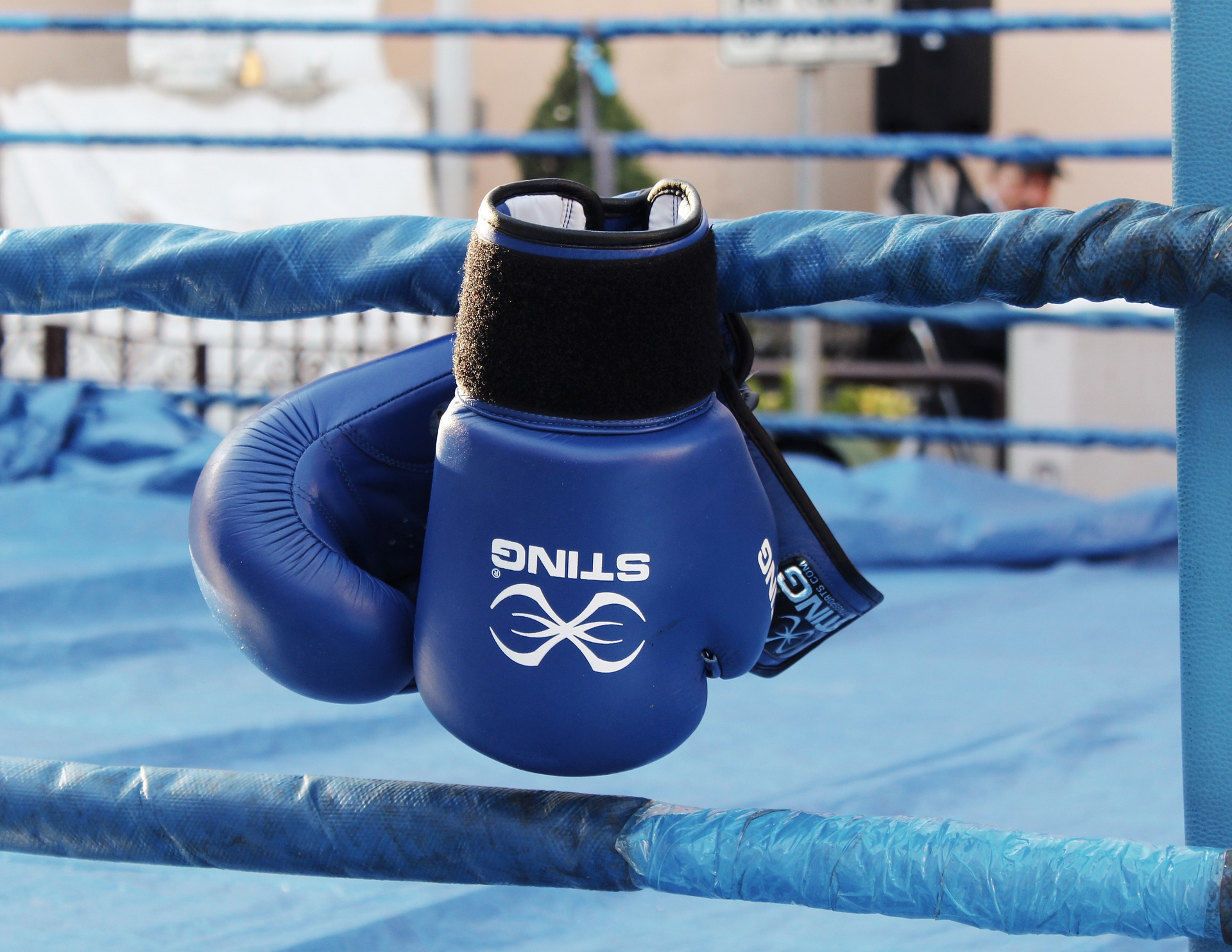 Top 12 Best Boxing Gloves [Reviews and Buying Guide]