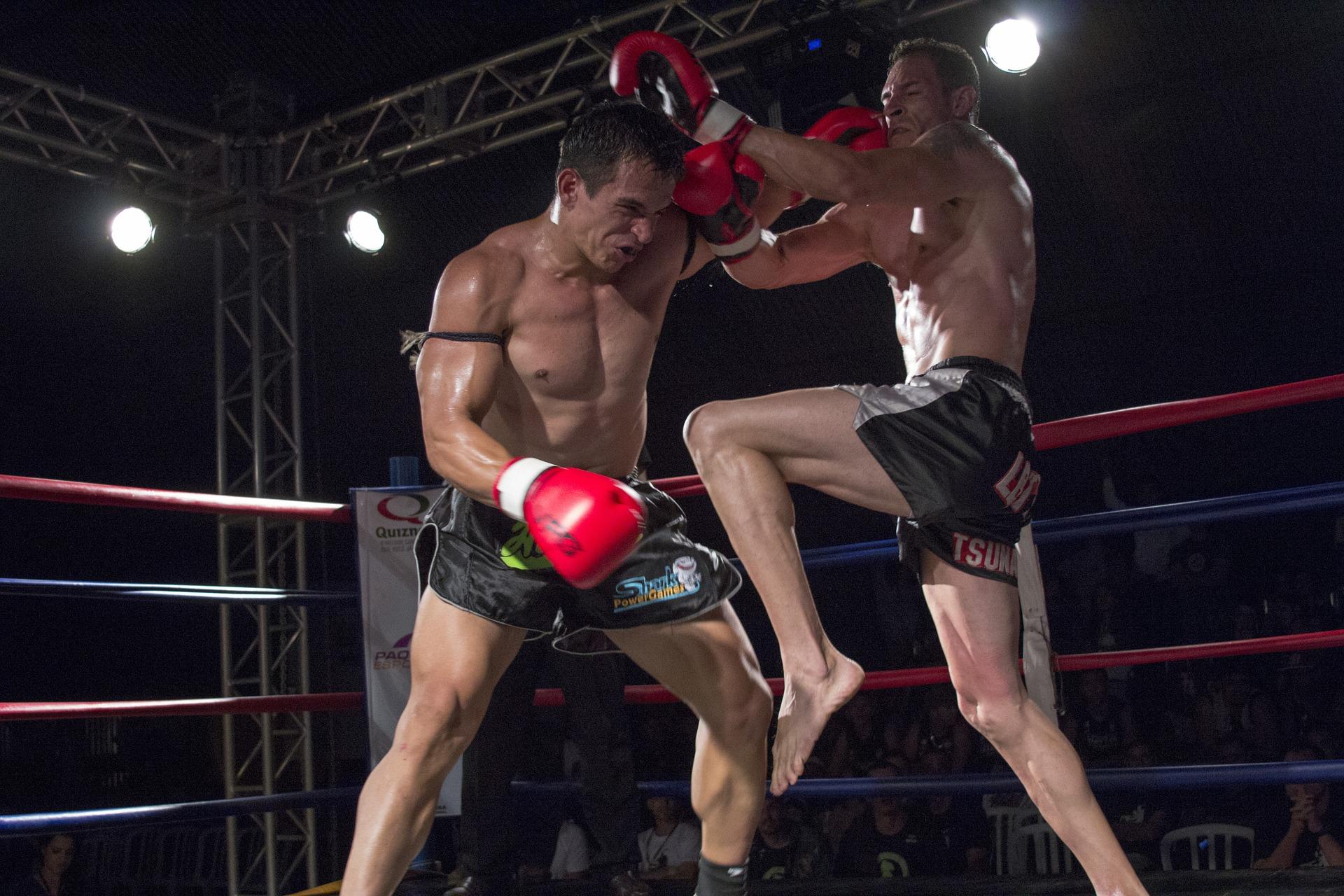 Top 5 Best Kickboxing Gloves