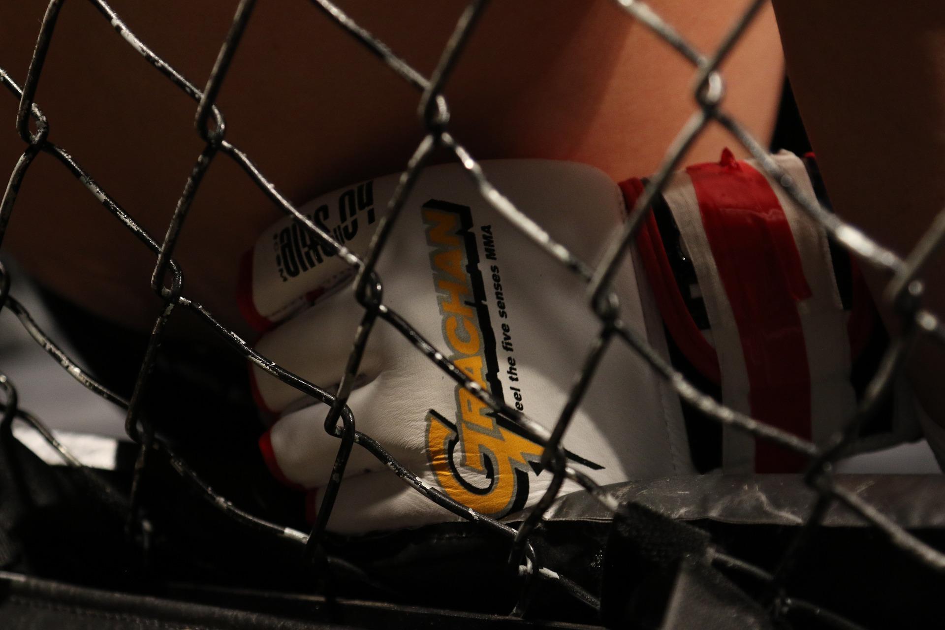 mma-gloves