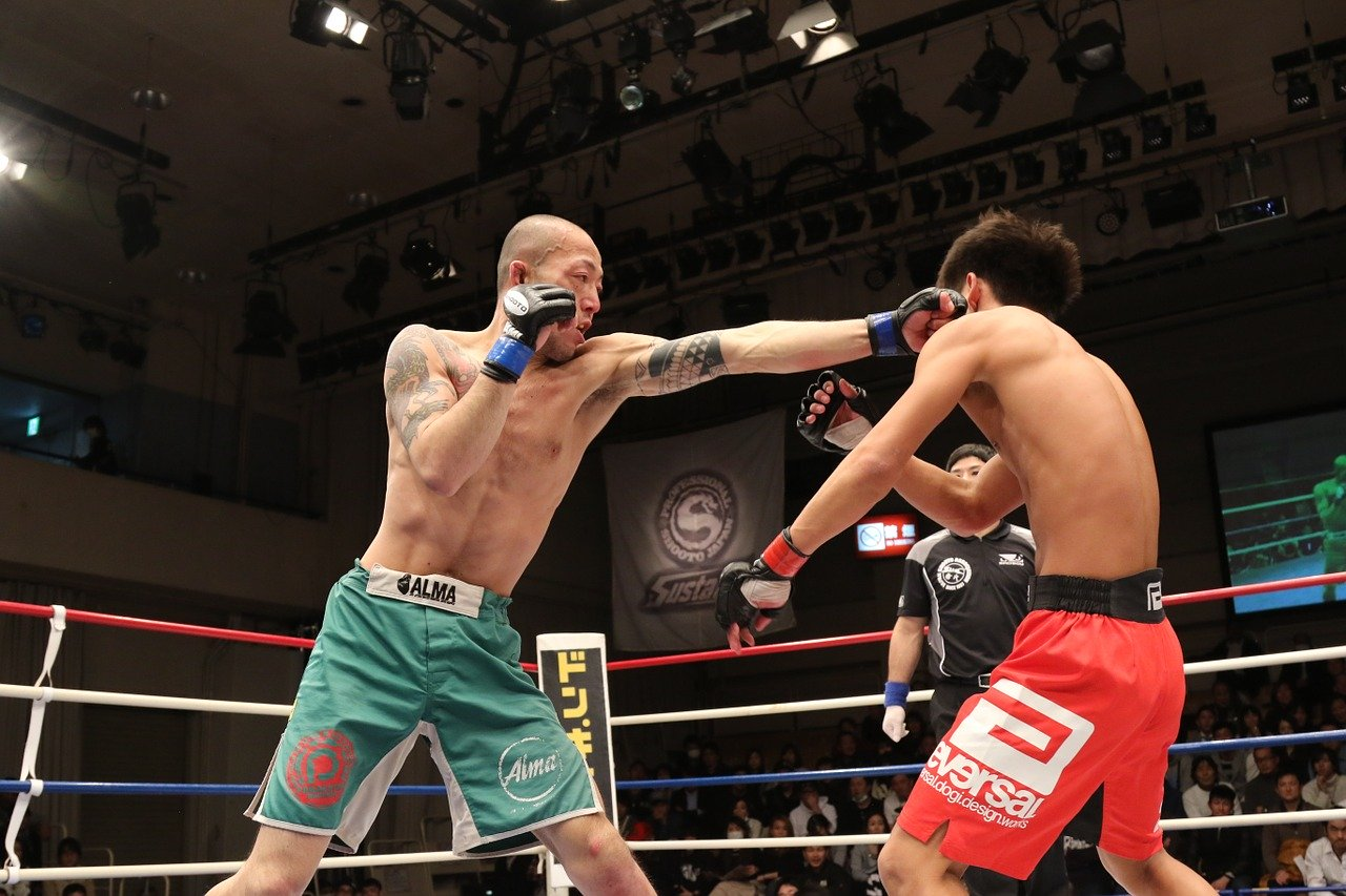 Top 7 Best MMA Shorts