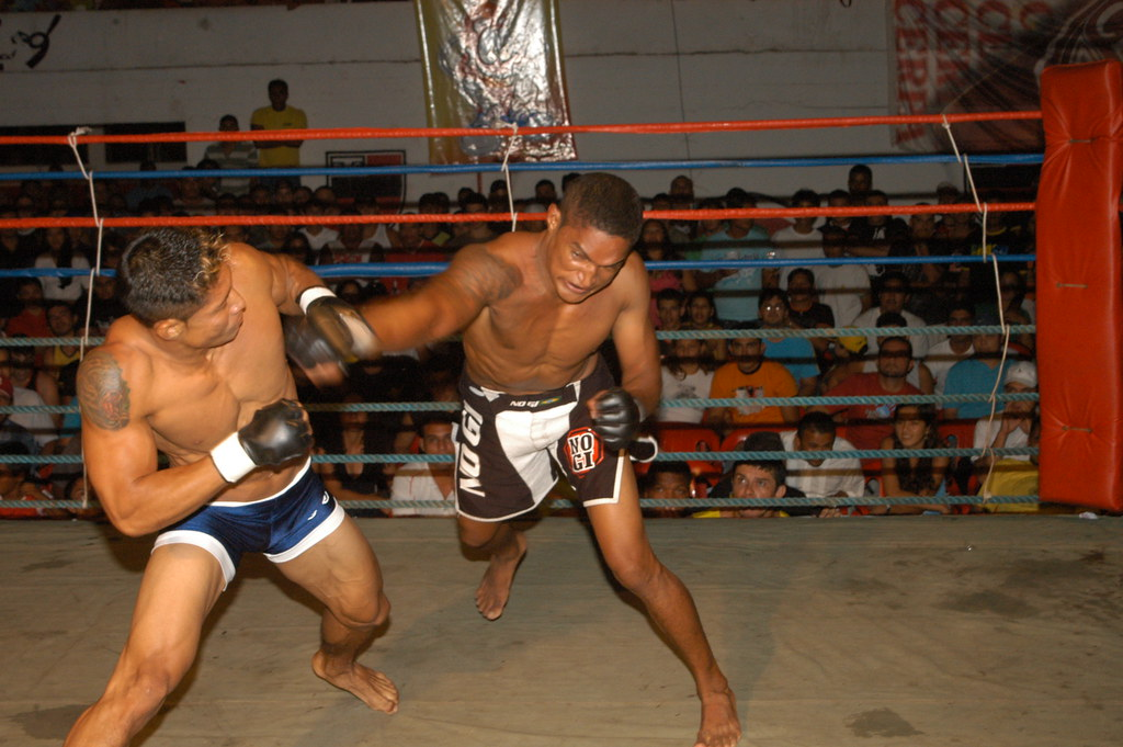 Vale Tudo- History, Rules and Fighters