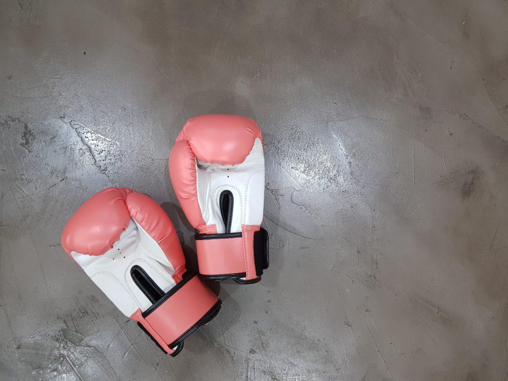 Fairtex Muay Thai Gloves